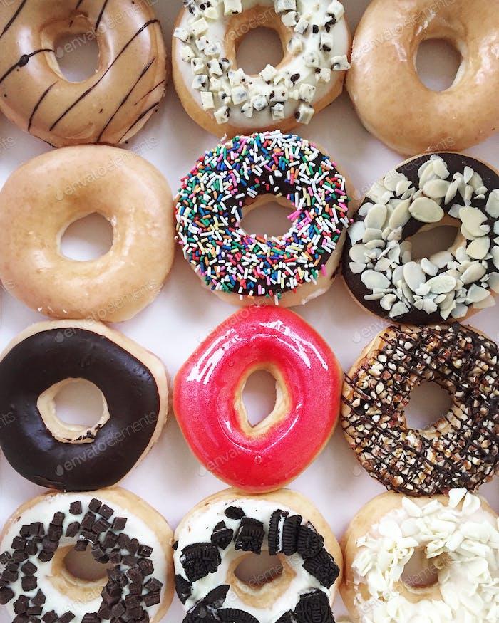 Dozen of Doughnuts !
