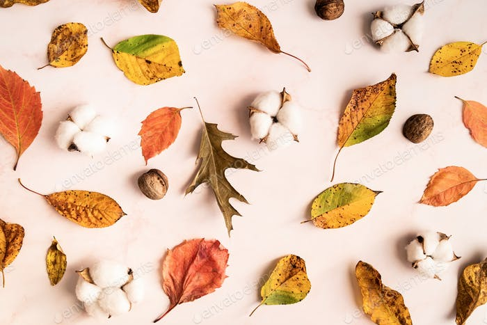 Autumn pattern of leaves and cotton flowers