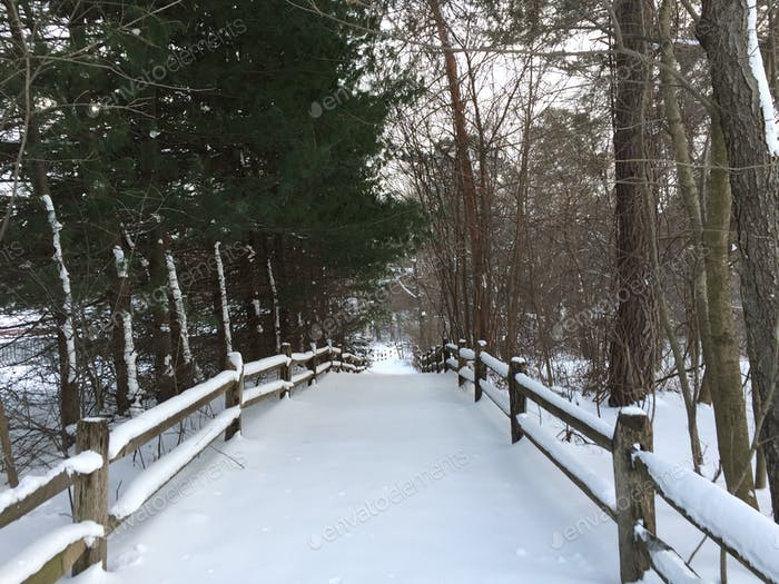 Ein schneebedeckter, umzäunter Weg durch den Wald führt im Winter bergab in die Ferne.
