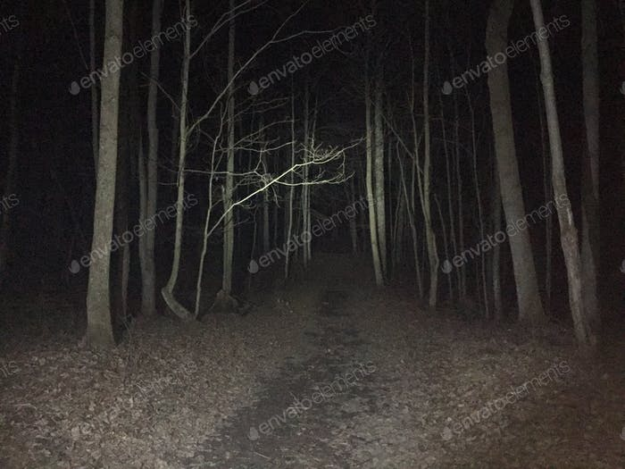 Late night walks = creepy AF