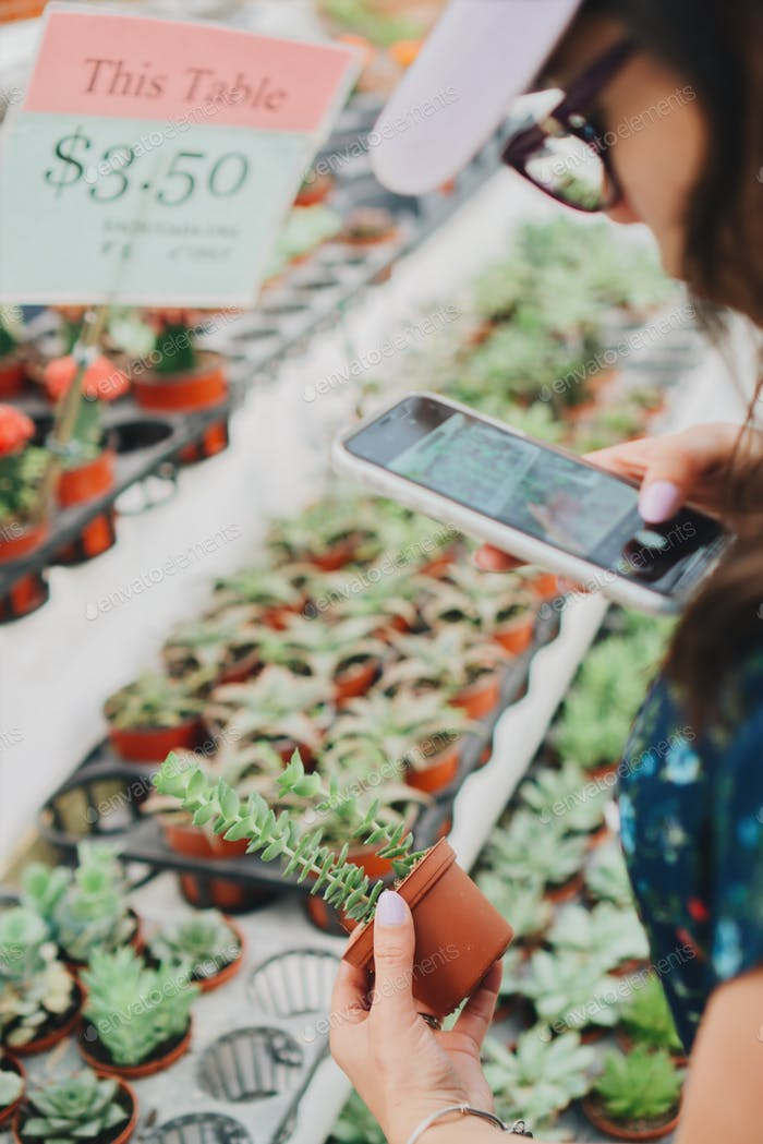 Woman taking a photo of succulent plant