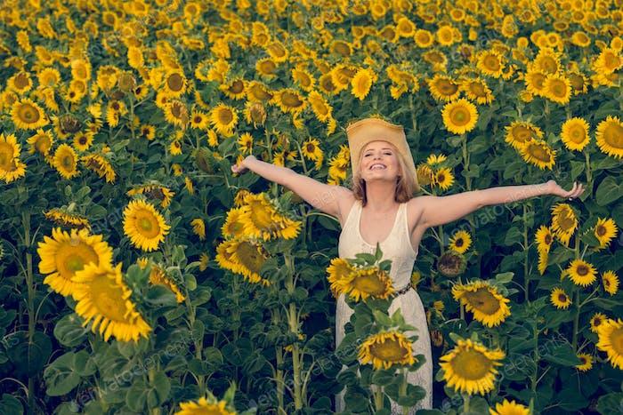 Sonnenblume Freude