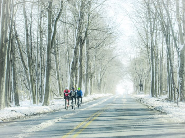 Tiny humans bike riding on wintry country roads through wooded area of snowy bare trees