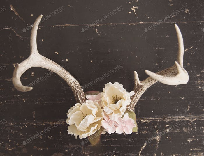 Floral covered deer antlers on distressed background
