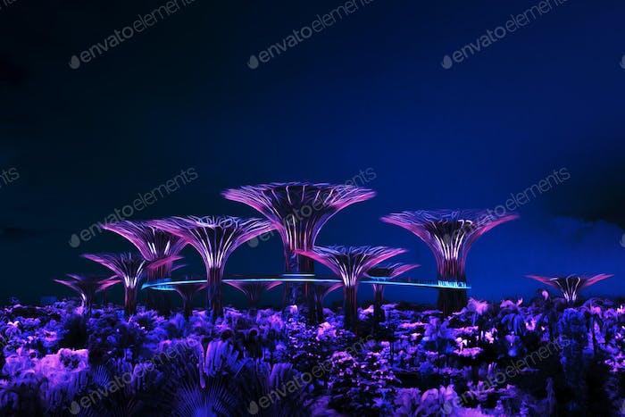 Avatar forest. Singapore.