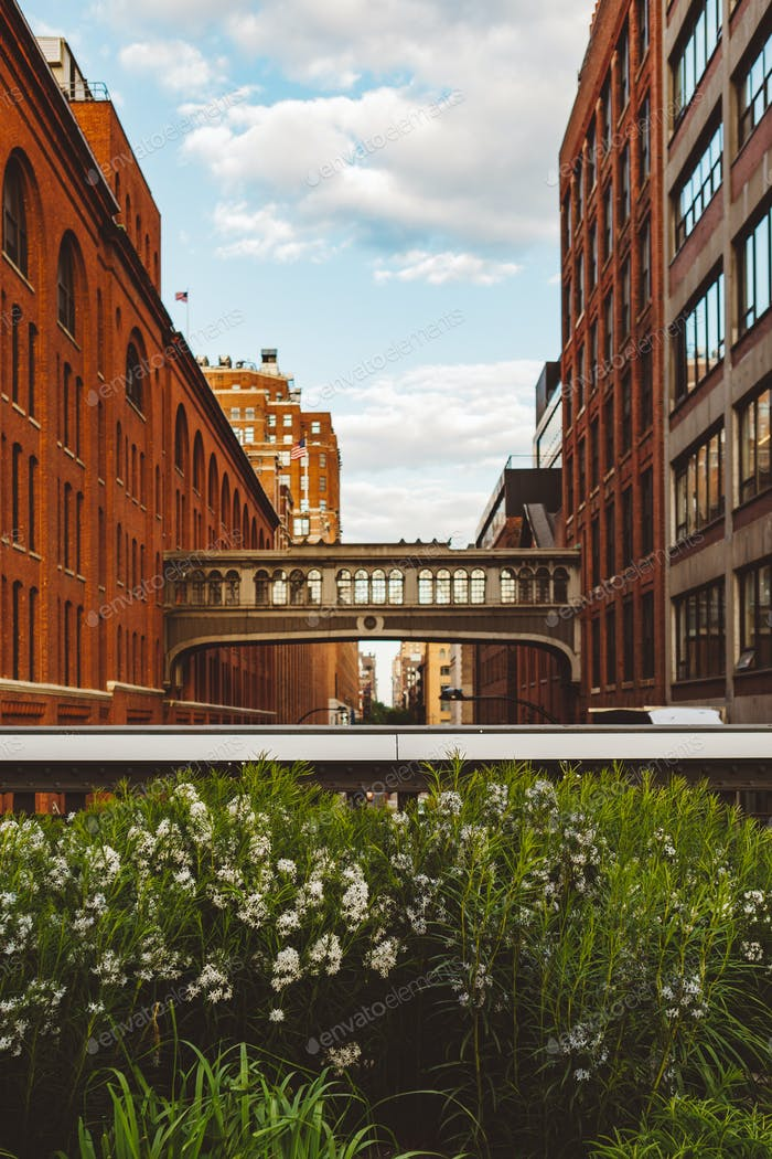Highline View in Chelsea