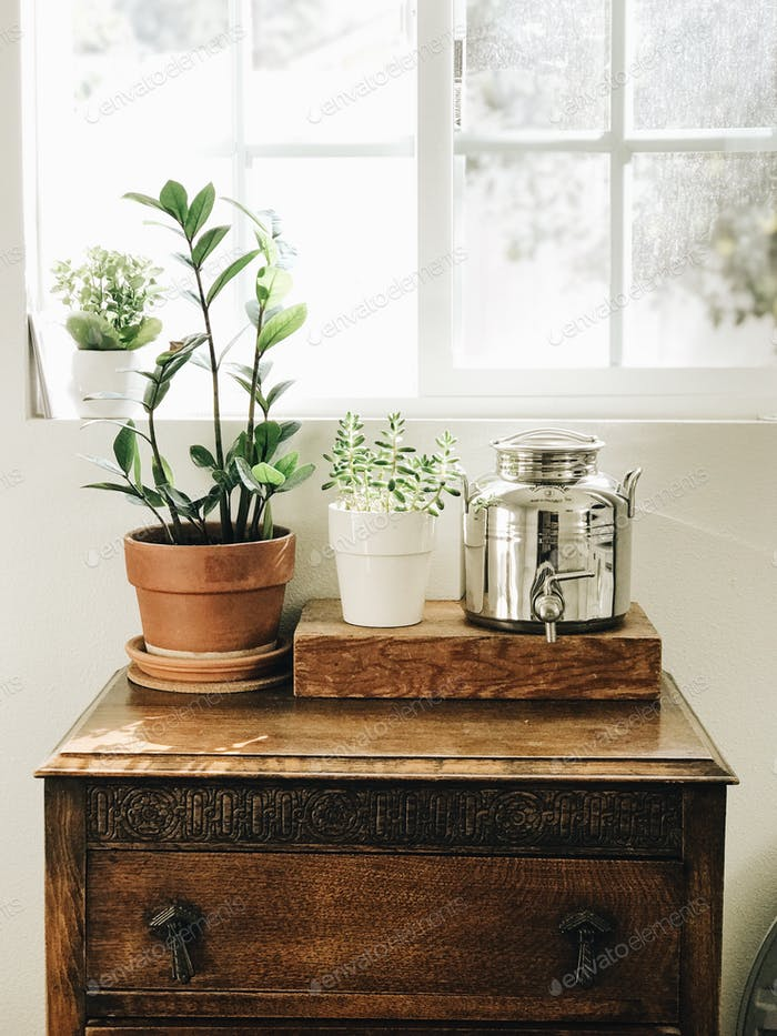 Small antique table with plants and decanter used for laundry detergent