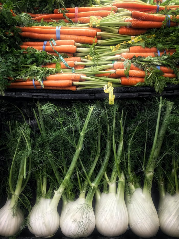 The beauty of carrots and fennel.
