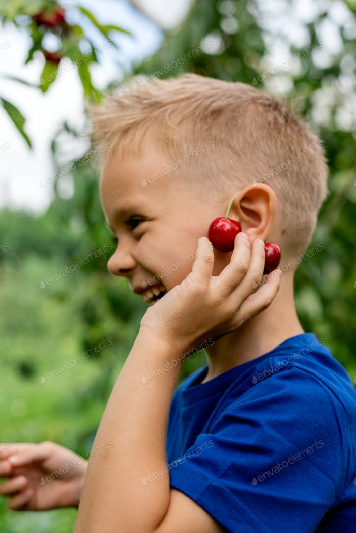 Candid portrait of a smiling boy in the orchard during cherries harvesting.