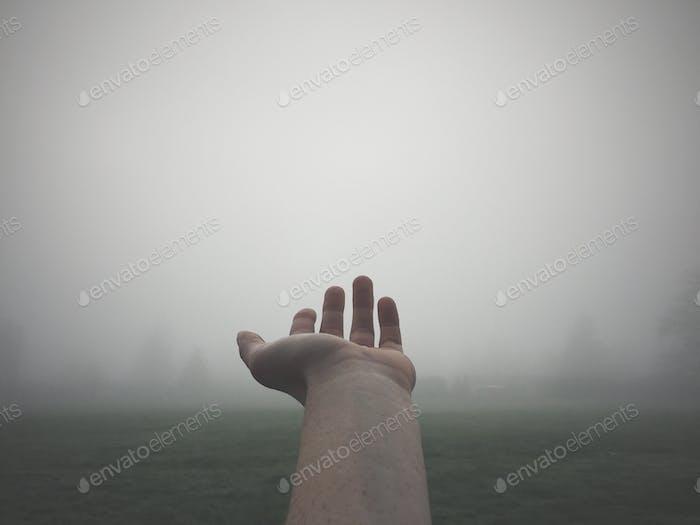 Hopeful Hands.