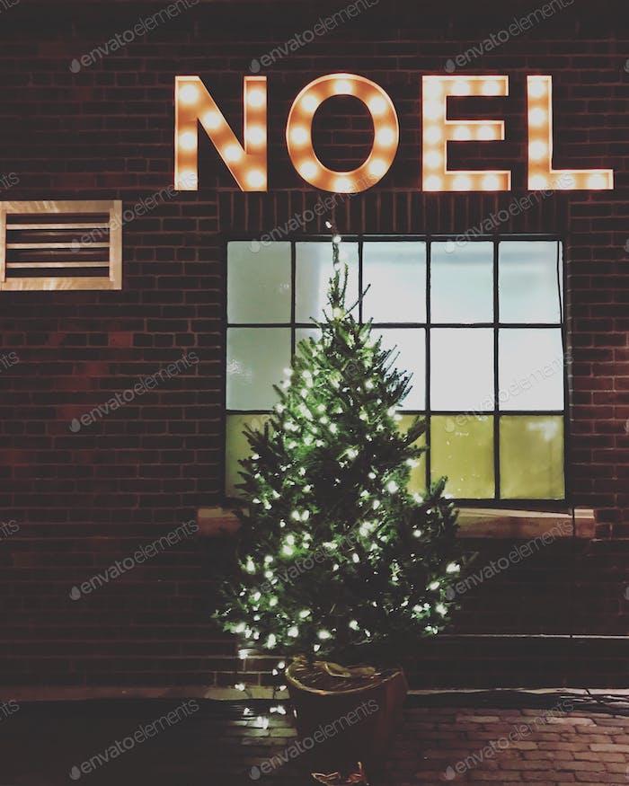 Christmas tree Noel