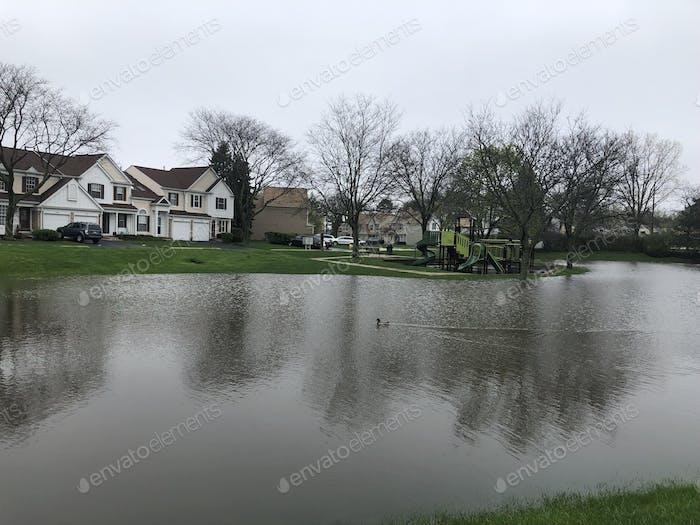Temporary Pond Created By Heavy Rainfall