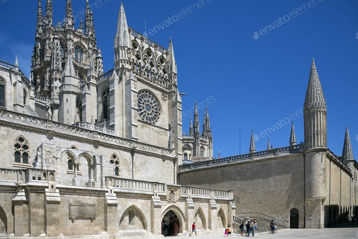 French Gothic Cathedral of St