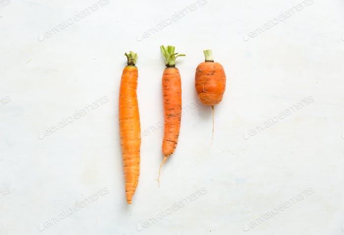 Hausgemachte Karotten in verschiedenen Formen und Größen