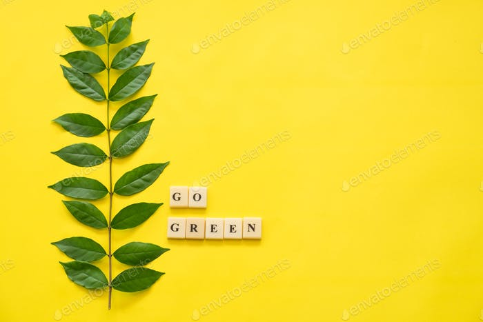 Flat lay of green leaves and western script says Go Green on yellow background