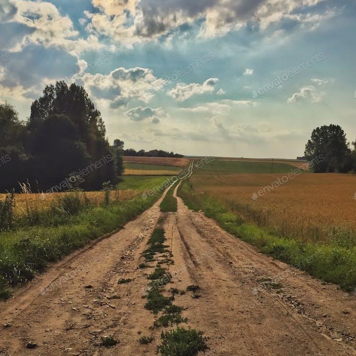 Carretera de campo