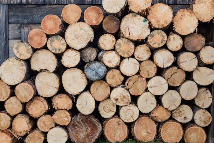 Beautiful log