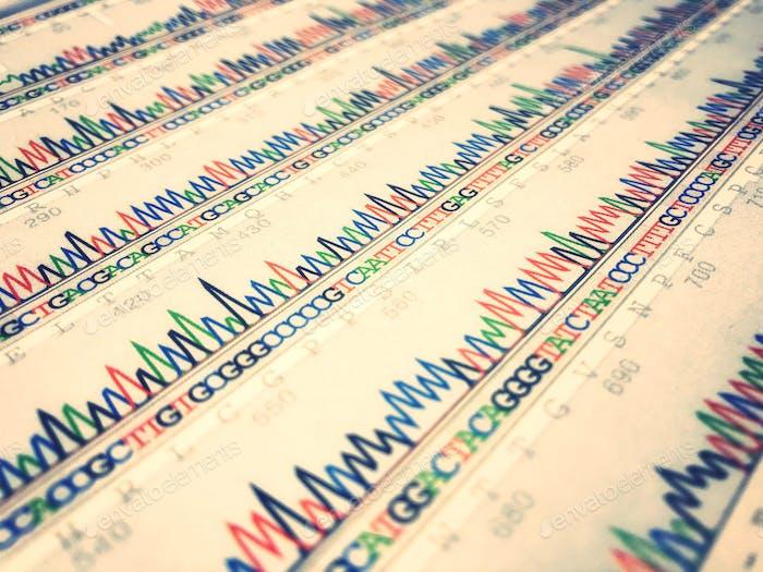 Data sheet of DNA sequence