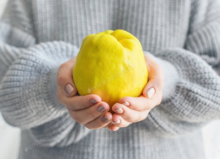 Close-up image of woman holding yellow fruit, quince. Hands, handful, color pop.