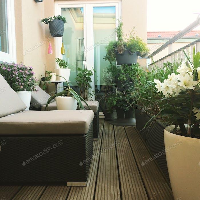 Jardín en mi balcón
