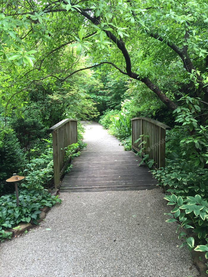 Gravel pathway and bridge in forest.
