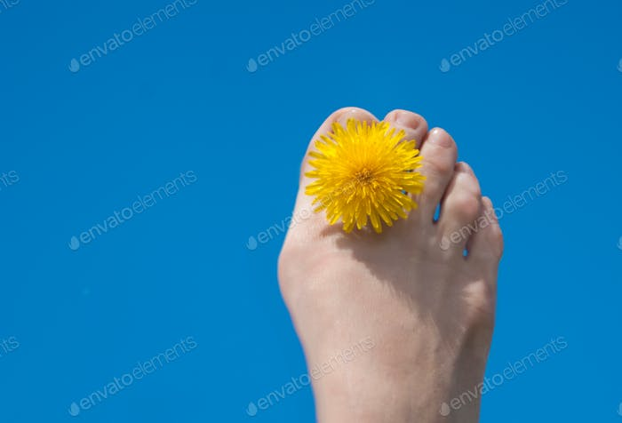 flower between toes