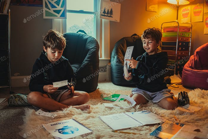 Twin boys being homeschooled
