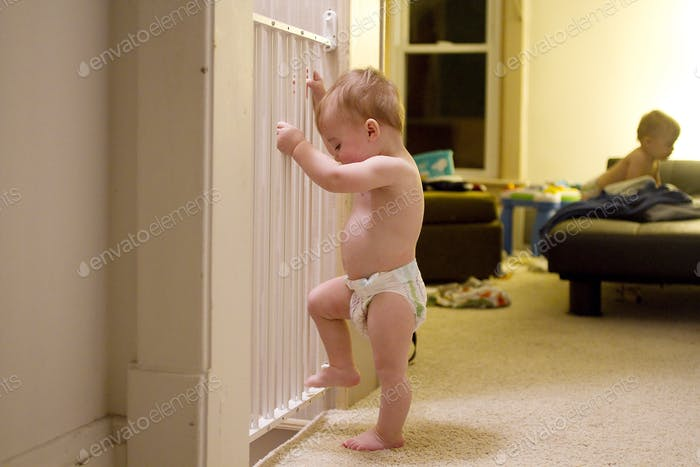 Baby by baby gate trying to escape
