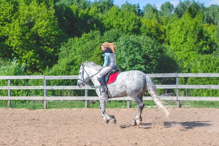 Young beautiful slim sexy girl jockey on a gray horse engaged in equestrian sport on the playground
