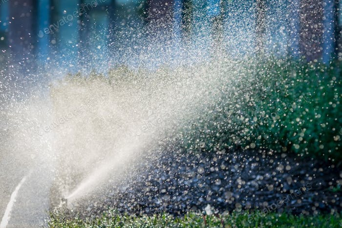 Water spray from automated sprinkler
