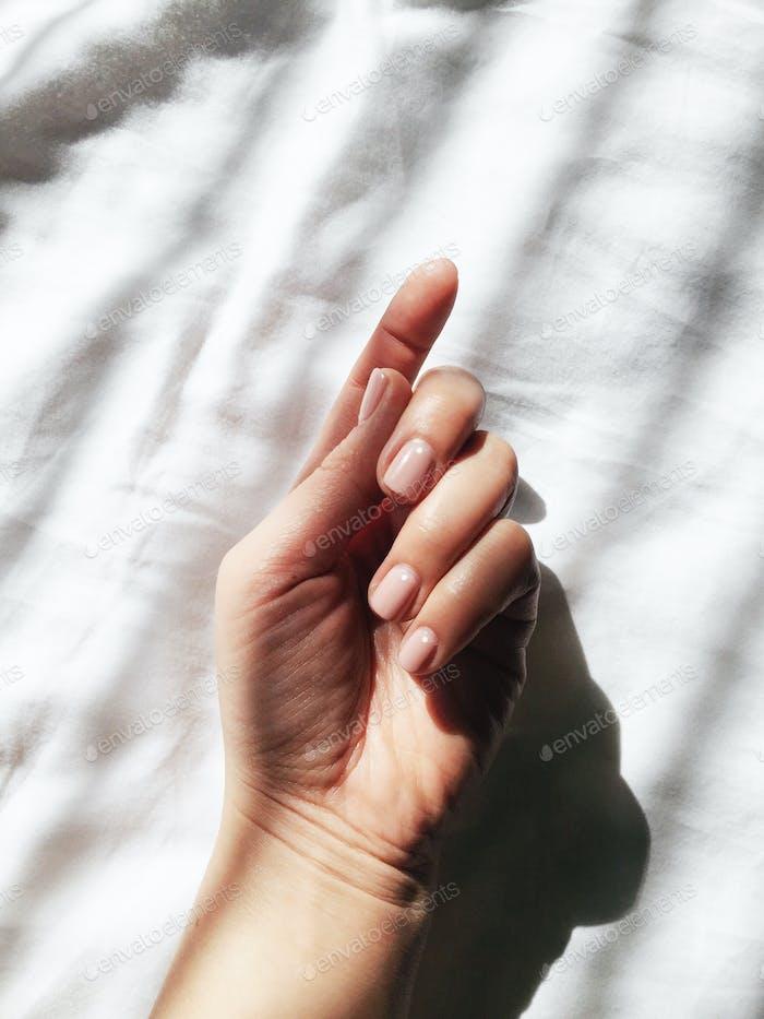 Die  Nägel im Licht.
