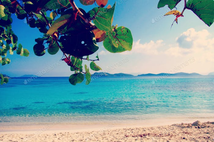 Perfect Day in Caribbean