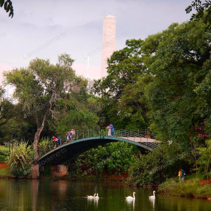 Ibirapuera Park São Paulo - Brazil
