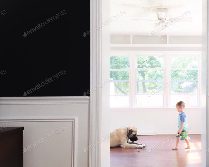 Looking through a doorway at a young toddler boy and large English mastiff dog playing in a light an