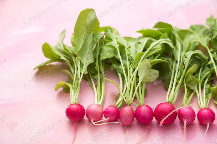 Pink radishes arranged in a neat row on a pink background