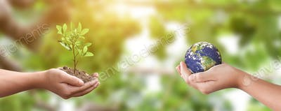 Environment day concept