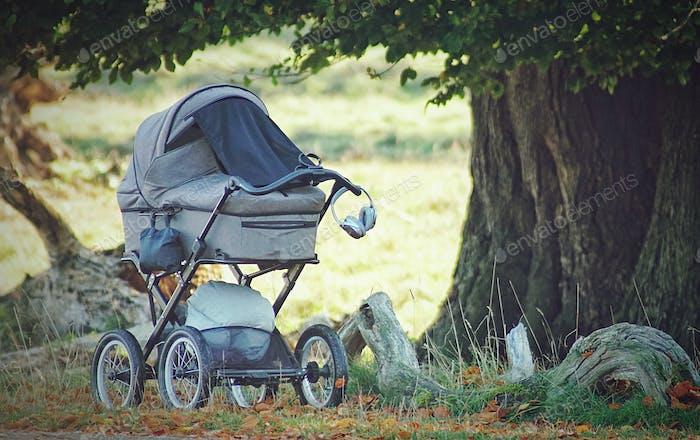 A forgotten baby