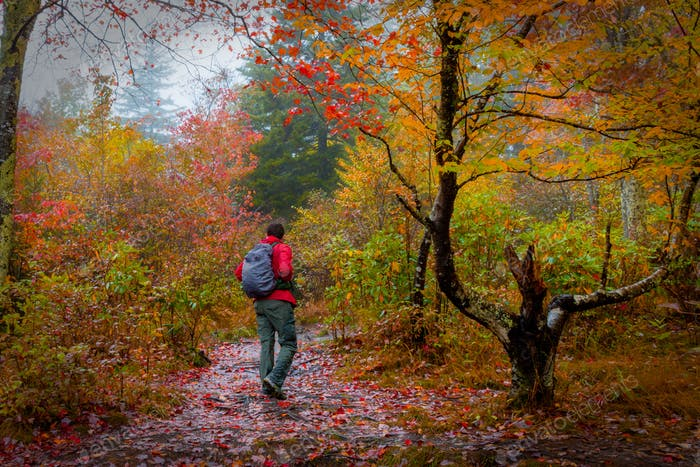 A backpacker explores Western North Carolina's Graveyard Fields on a rainy day.
