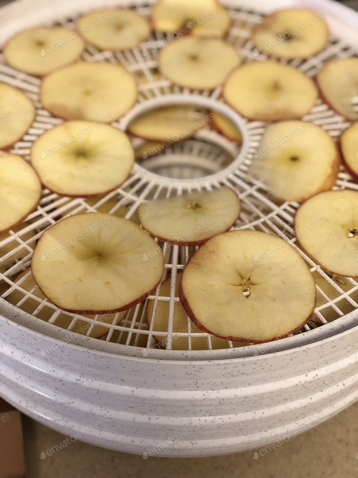 Dehydrating apples for a healthy snack.