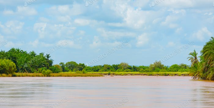 african river Wami with orange water with banks covered with trees