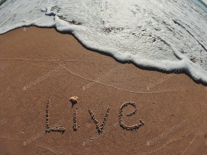 Escrito en vivo en texto en la costa