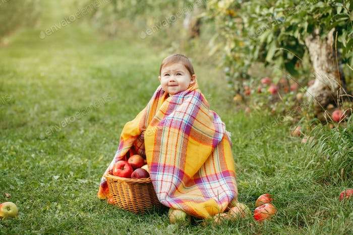 farm; apple; autumn; basket; baby; holding; fall; pick; gather; caucasian; countryside; harvest;