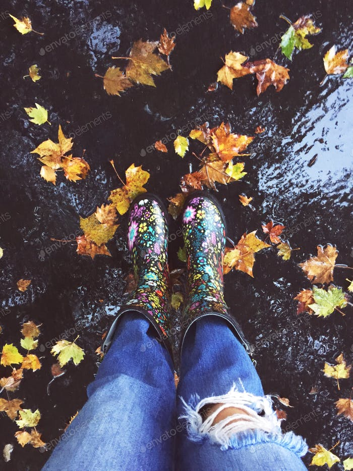 Der Herbst fällt!