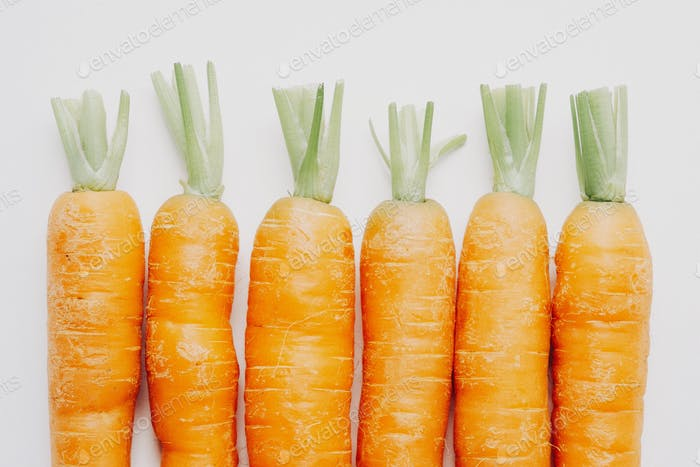 Row of trimmed carrots