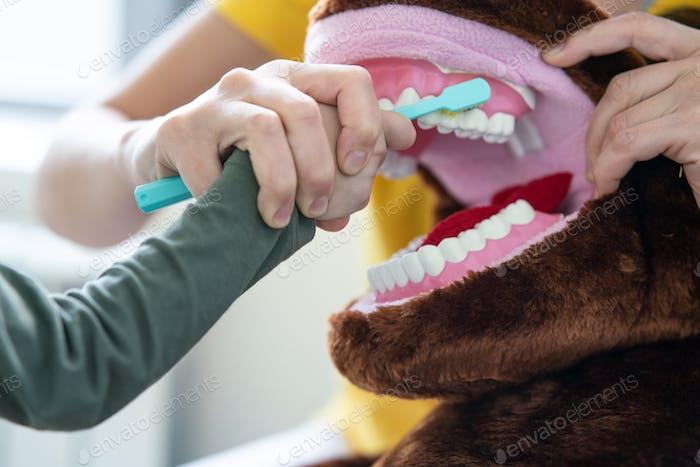 Kinderzahnarzt zeigt Little Boy, wie man Zähne mit Zahnbürste putzt
