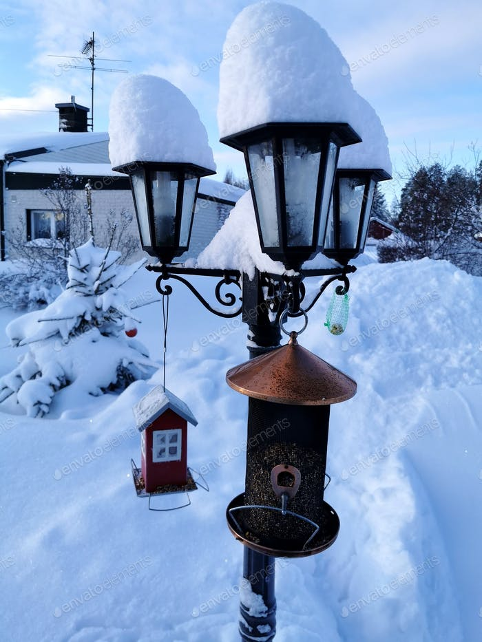 snowfall in the North of Sweden