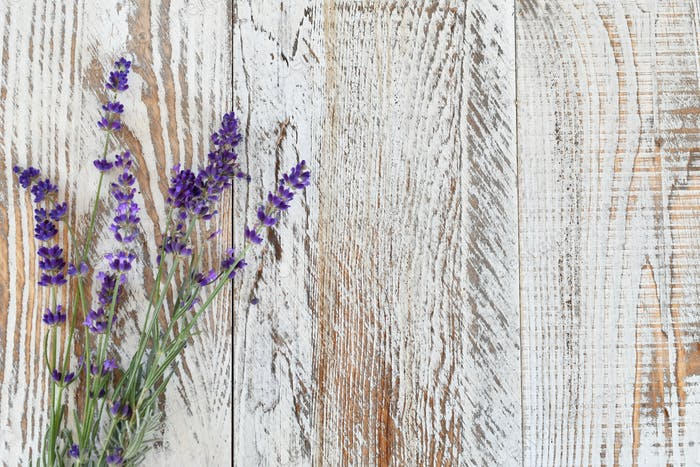 Overhead view of Lavender sprigs with blossoms on a white distressed wooden table