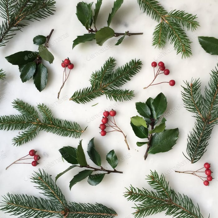 Holly, berries and evergreens
