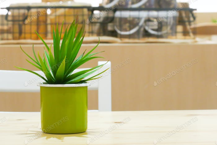 Green cactus in flowerpot on wooden table.