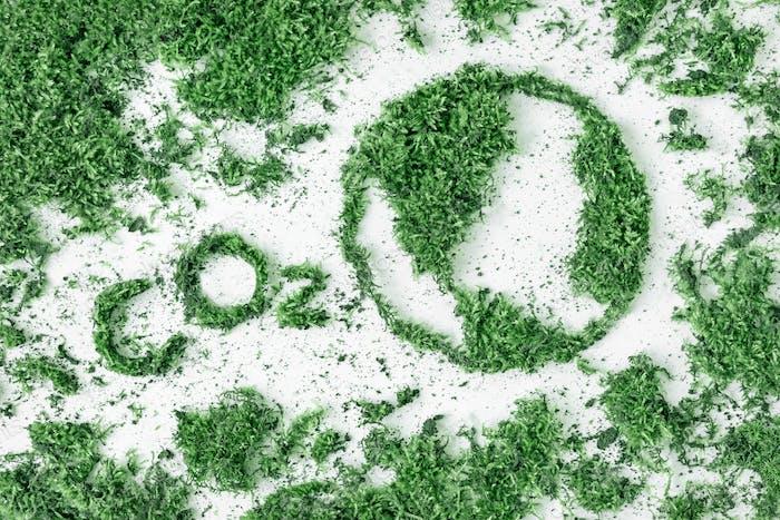Letras de CO2 y dibujo del planeta tierra de la hierba y el musgo